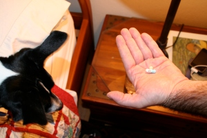 That's my last pill, Chopper. It's not a treat!